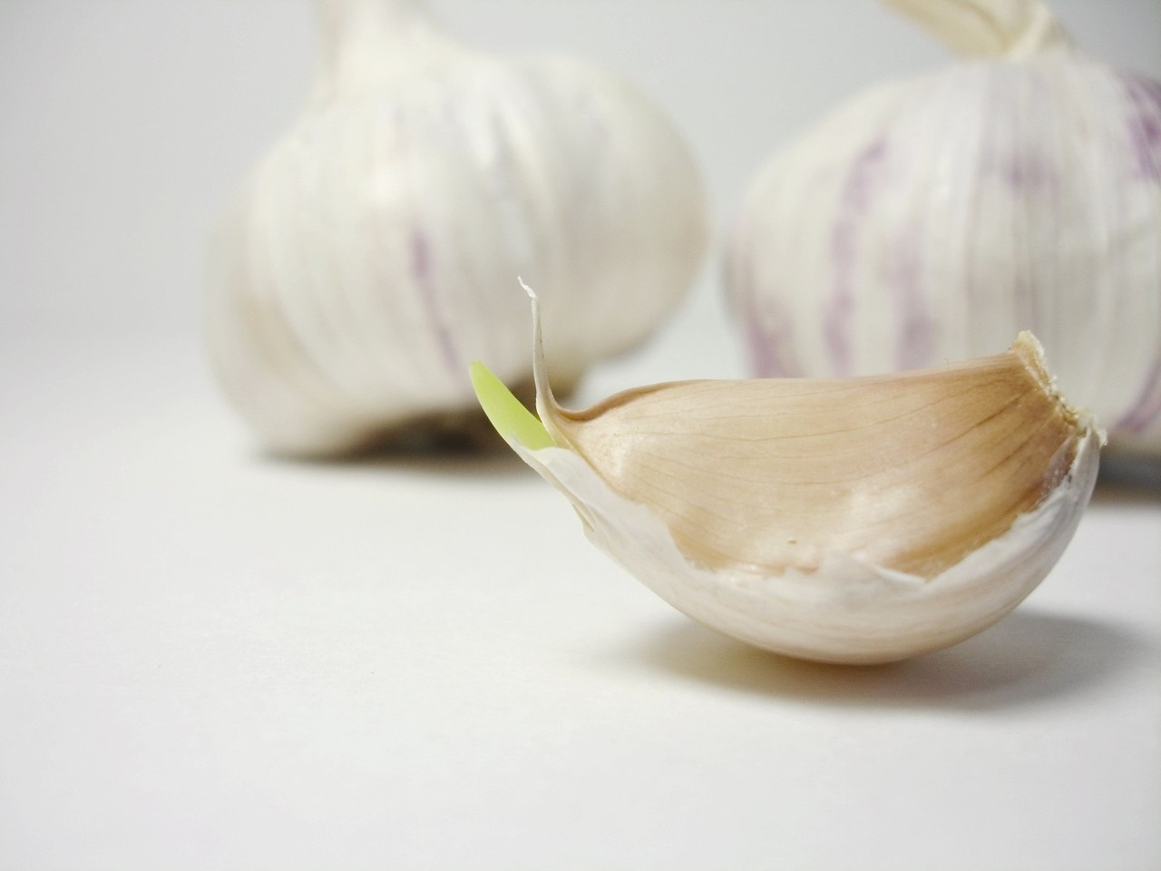 Morning Breath Garlic